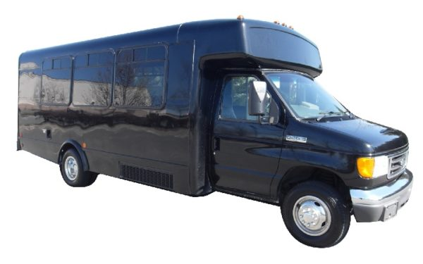 20 passenger party bus rentals